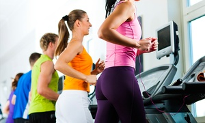 Next Level Fitness: From $19 for a One-Month Gym Pass and 30-Minute Personal Training Session at Next Level Fitness (From $120 Value)