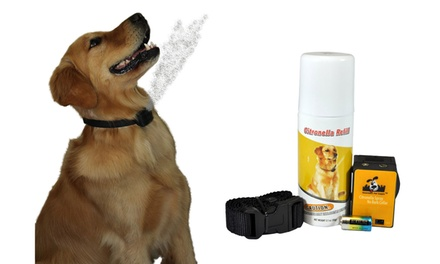 Best No Bark Collar Citronella Spray Anti Bark Collar For Dogs