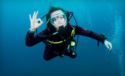 Coral Reef Dive Shop - Coral Reef Dive Shop in Slidell