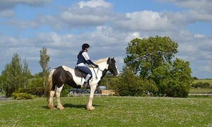 Claremorris Equestrian Centre: 90-Minute Horse Riding Session for One, Two, or Four at Claremorris Equestrian Centre (Up to 58% Off)