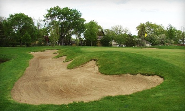 Links & Tees Golf Facility - Michael Lane Area: Nine Holes of Golf for Two or Four or Day Membership at Links & Tees Golf Facility in Addison (Up to Half Off)