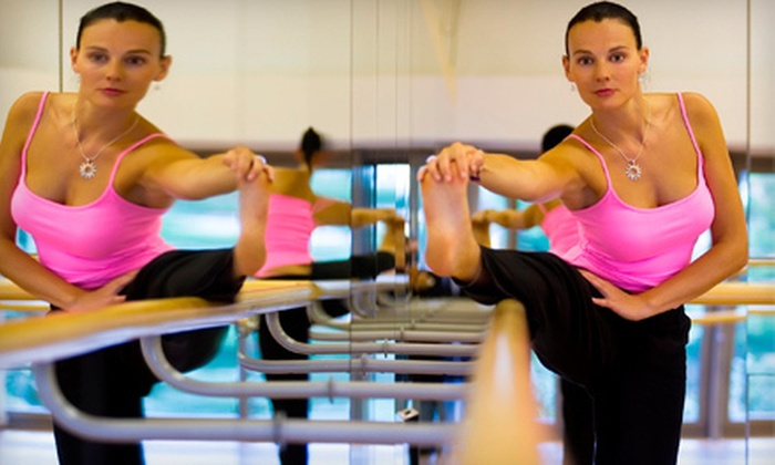 The Magnificent Body - Laurel: 10 or 20 Barre, Yoga, or Pilates Classes at The Magnificent Body