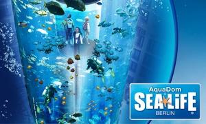 AquaDom & SEA LIFE Berlin: Tagesticket für einen Erwachsenen oder ein Kind inklusive Slushy für das AquaDom & SEA LIFE Berlin (bis zu 42% sparen)