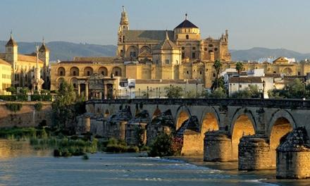 Córdoba: 1 o 2 noches para 2 en habitación doble con desayuno y copa de vino y opción a cena y karting en Las Monteras