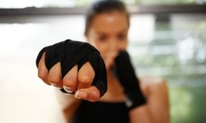 Humboldt Park Tigers Illinois Martial Arts Association: 10 or 20 Kickboxing Classes at Humboldt Park Tigers Illinois Martial Arts Association (Up to 55% Off)