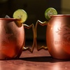 Duckhouse NFL Copper Moscow Mule Mug (16 or 24 Oz.) (1-Pack)