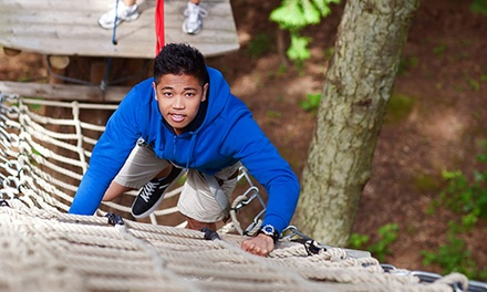 Classic Adventure and Extreme Adventure Course for One, Two, or Four at WildPlay Element Parks (Up to 35% Off)