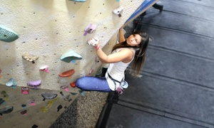 Up to 52% Off Indoor Climbing at Vertical Hold at Vertical Hold Rock Climbing Gym, plus 6.0% Cash Back from Ebates.