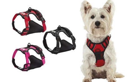 Bunty Adventure Harness