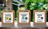 "Groupon Goods Global GmbH: 1 ou 2 kits de plante de café aromatique ""Grow Your Own"""