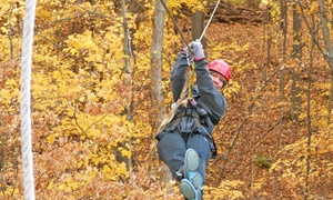 Lake Geneva Canopy Tours: 2.5-Hour Canopy Tour for Two or Four at Lake Geneva Canopy Tours (Up to 27% Off)
