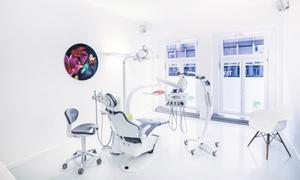 Munddesign: Titan-Implantat mit Vollkeramik-Zahnkrone und abdruckfreier 3D-Scan-Erstellung (bis zu 85% sparen*)