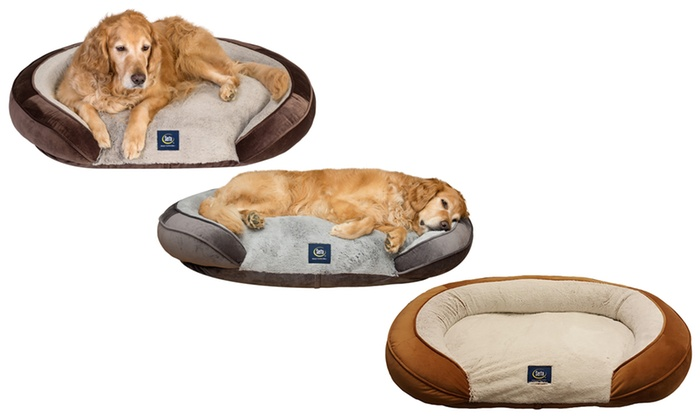 Swell Serta Shredded Foam Oval Couch Dog Bed Groupon Uwap Interior Chair Design Uwaporg