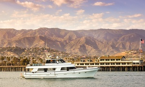 Up to 50% Off Whale-Watching Cruises at Celebration Cruises at Celebration Cruises, plus 6.0% Cash Back from Ebates.