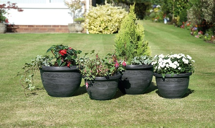 Three- or Four-Packs of Greenhurst Planters or Fence Panels
