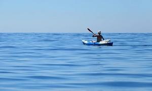 Up to 51% Off Kayak Rental from Surf Ballard at Surf Ballard, plus 6.0% Cash Back from Ebates.