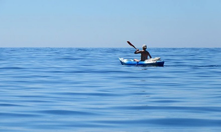 Two-Hour Kayak Rental for One or Two from Surf Ballard (Up to 52% Off)