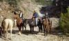 Up to 42% Off Horseback Trail Rides