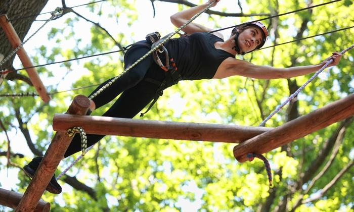 Parco Avventura Quercus Park - Ripatransone (AP): Percorso per adulti o famiglia al Parco Avventura Quercus Park da 3,90 €