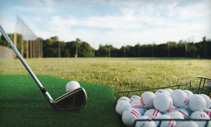 Bisbee Golf Center - Bellevue: 2 or 15 Buckets of Driving-Range Balls at Bisbee Golf Center (Up to 53% Off)