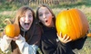 Up to 60% Off Corn Maze & Fun Park Package at Maize Quest