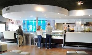 Plums: Desde $119 por 1, 2 o 4 kilos de helado sabor a elección en Plums