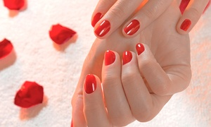 Ziyan Salon & Spa: One, Two, or Three Spa or Shellac Manicures at Ziyan Salon & Spa (Up to 54% Off)
