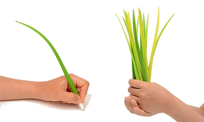 Groupon Direct - 485602: 24 (AED 59) or 36 (AED 69) Grass Blade Pens