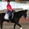 Up to 48% Off Private Horseback-Riding Lessons