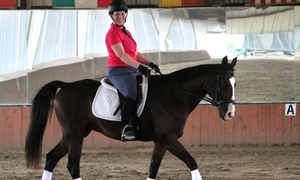 CBY Equestrian Academy: One or Three Horseback-Riding Lessons at CBY Equestrian Academy (55% Off)