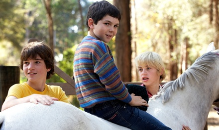 $49 for Kids' Pony-Ride Party for Up to Eight at Pine Trails Ranch ($85 Value)