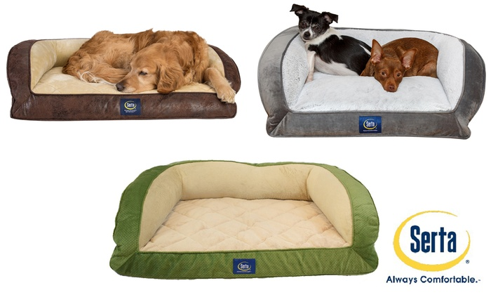 Awesome Up To 60 Off On Orthopedic Couch Bed For Pets Groupon Goods Short Links Chair Design For Home Short Linksinfo