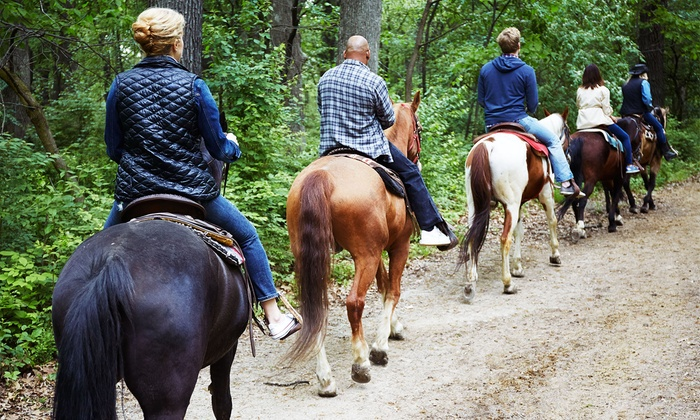 Rocking K Horse Rentals - Newbury Park: Scenic Horseback Ride with Souvenir Photo for One, Two, or Four at Rocking K Horse Rentals (Up to 42% Off)