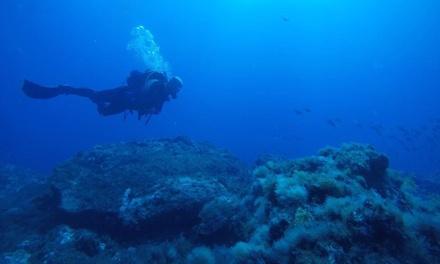 Bautismo de buceo para 2 personas o curso DIWA Open Water en Scuba Chacho Diving Club (hasta 66% de descuento)