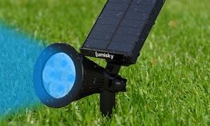 Projecteur solaire LED multicolore