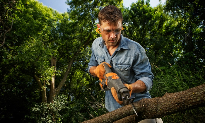 Mal's Tree & Landscape - Boston: 180 Minutes of Tree Trimming, Tree Removal, and Stump Removal from Mal's Tree & Landscape (45% Off)