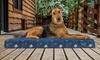 FurHaven Garden Indoor/Outdoor Deluxe Gel Top Pet Bed: FurHaven Garden Indoor/Outdoor Deluxe Gel Top Pet Bed