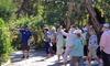 Up to 58% Off Jungle Prada Site Tour from Discover Florida