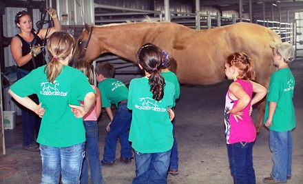 1-Hour Horsemanship Introduction Class (a $40 value) - Cliff Hartman Farms Quarter Horses in Marshfield