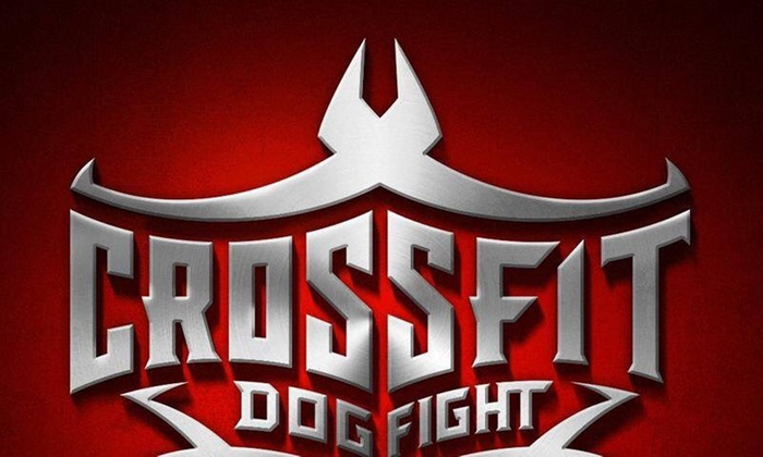 CrossFit Dog Fight - I69-Fall Creek: $63 for $180 Worth of Services — Crossfit Dog Fight