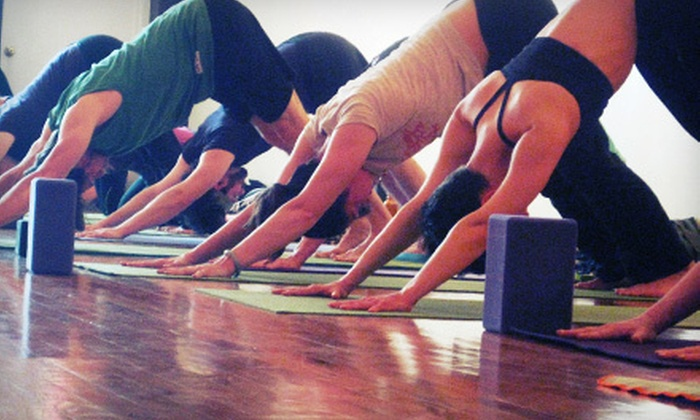 Nature Yoga - Wicker Park: 10 or 15 Classes at Nature Yoga (Up to 80% Off)