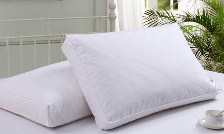 Two or Four Box Wall Duck Feather Pillows