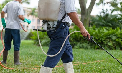 From $59 Internal and External Pest Control for a Single-Storey Home with Black & White Home Services (From $200 Value)
