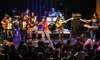 Talking Dreads, The Threetles, Andy McKee, Southern Culture on the Skids, or The Red Elvises - High Dive: High Dive Concerts: Talking Dreads, Beatles Tribute, Andy McKee, Southern Culture on the Skids, or The Red Elvises