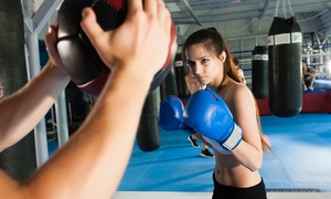 CrossBox Training Center: 5, 10, or 20 HIIT Boxing Classes at CrossBox Training Center (Up to 67% Off)