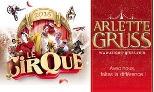 """Cirque Arlette Gruss: 1 place pour la nouvelle tournée 2016 du Cirque Arlette Gruss àNancy """"Le Cirque""""avec visite de la ménagerie dès 13 €"""