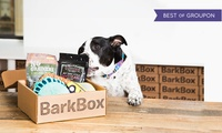 One- or Three-Month Dog Goodie Delivery Subscription with Extra Toy Club Membership from BarkBox (Up to 24% Off)