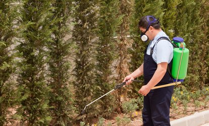 57% Off Pest Control Service - General