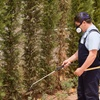 67% Off Pest Control Service - General