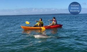 Sea Kayak Jervis Bay: Sit-on-Top Kayak Tour for One ($29), Two ($55) or Four People ($105) with Sea Kayak Jervis Bay (Up to $236 Value)